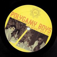 mp3polygamyboys