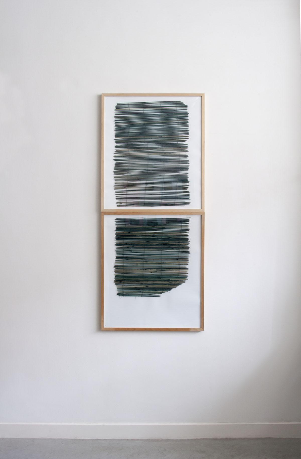 Green line Variation s